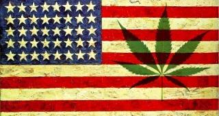 Marijuana War