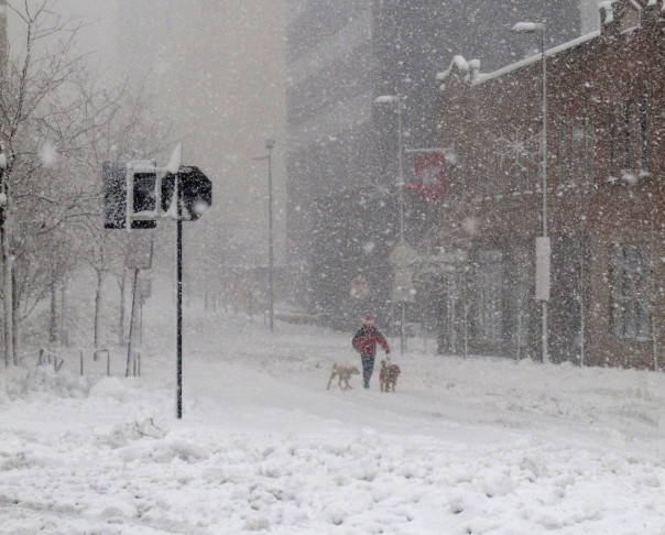 A man walks his dogs last winter down the middle of a deserted street in downtown Madison, Wis. (AP photo)